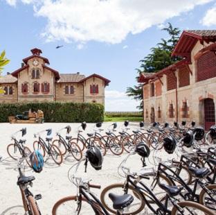 Rallye Vélo dans le Vignoble